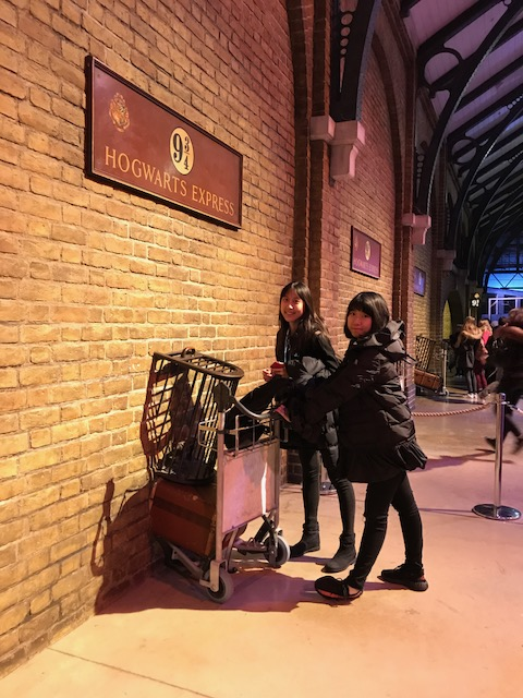DLD College London Students Harry Potter