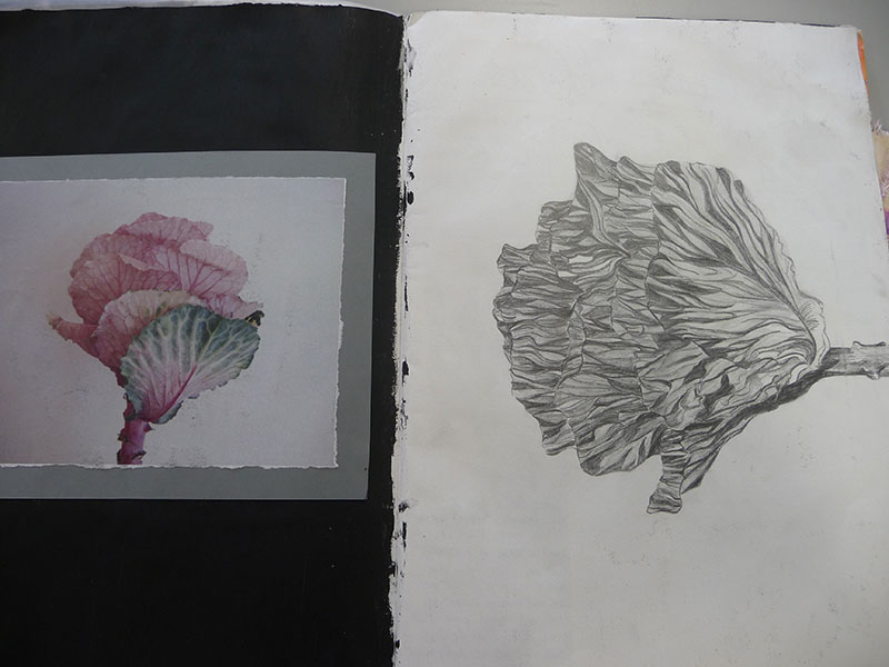 DLD College London A Level student Georgia's sketchbook